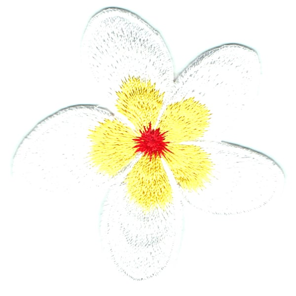 Frangipani Yellow